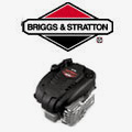 Briggs Engine